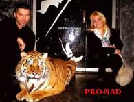 Тигры для Форта Боярд